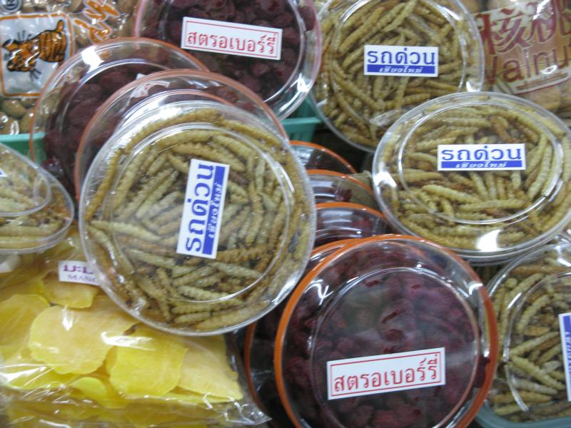 Worms for sale in the Warorot Market in Chiang Mai Thailand